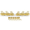 3 On A Plate Supreme Series Tuning Machines Gold With White Plastic Button